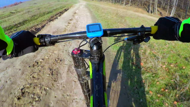 Cycling downhill a forest road. video