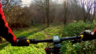 POV Cycling in the forest. video