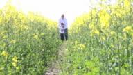 Dad lifts little boy in beautiful field. video