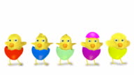 dancing group of yellow chicks isolated on white background video