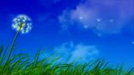Dandelion Blowing In The Wind video