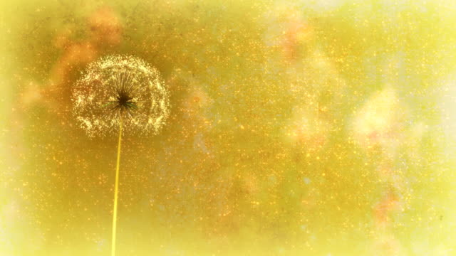 Dandelion Wishes. Section between 6:00-12:00 can be removed or looped video
