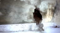 dark horseman HD slowmotion video