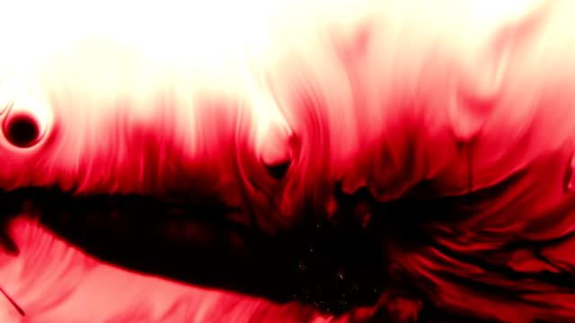 Dark Red Blood Bleed On White video