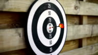 Dart arrow hits bullseye on board, game mastery, success. Winner, lucky person video