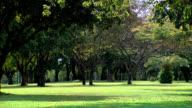 Darwin City the Esplanade video