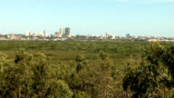 Darwin City Through Gum Trees 5 video