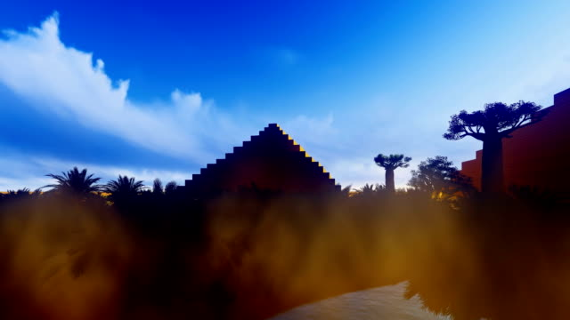 Date palms in oasis with pyramids video