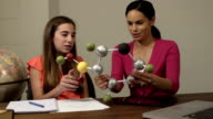 Daughter Shows Mother her Science Project of a Molecule video