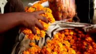 A day in the life of an Indian Street - Indian street vendor - geranium man video