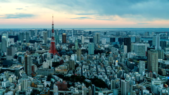 4K Day to night Time-Lapse :  Arial view of Tokyo Tower and Tokyo cityscape skyline video