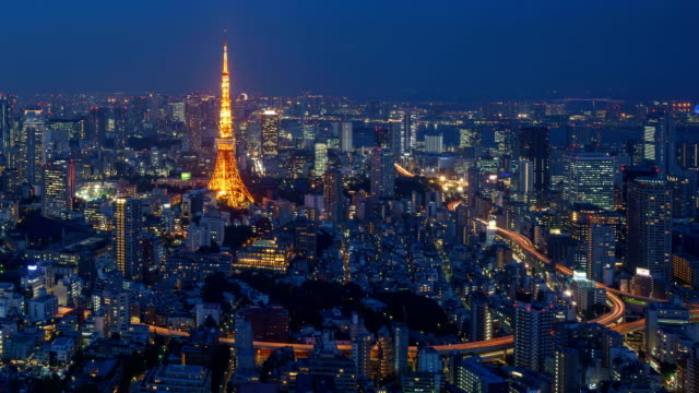Day to Night Timelapse of Tokyo city, Japan video