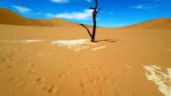HELI Dead Acacia Tree In Deadvlei video
