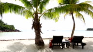 Deckchairs at tropical landscape view, Seychelles video