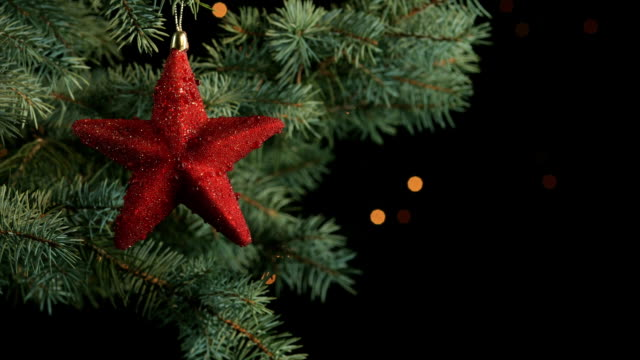 Decorated christmas tree branch video