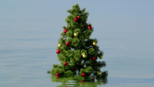 Decorated Christmas Tree in the turquoise water on a tropical beach video