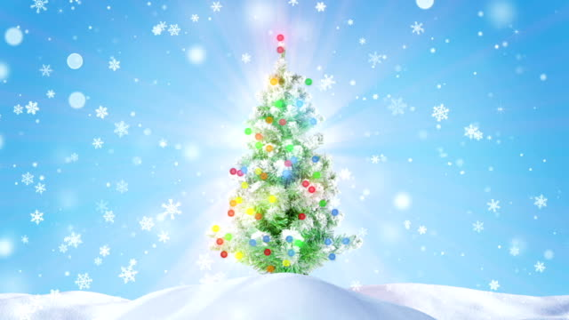 decorated glowing christmas tree outdoor loopable video