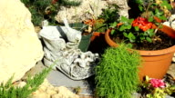 Decoration of a garden. video