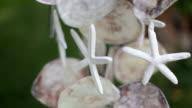 Decorative bell video