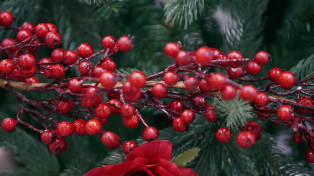 Decorative branch with red berries video