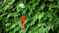 Decorative Japanese bell (furin) video