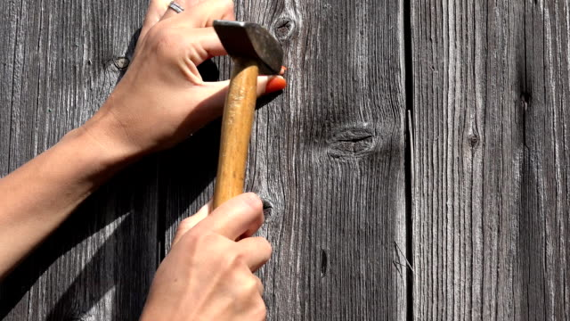 Decorator woman nail hammer nail in wooden wall and hand horse shoe on it. Closeup shot. FullHD video
