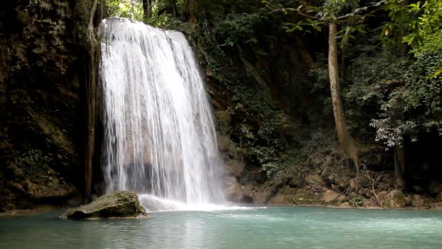 Deep forest waterfall video