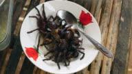Deep fried tarantulas on a bowl video