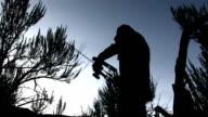 Deer Hunter Archery sunset silhouette video