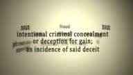 Definition: Fraud video