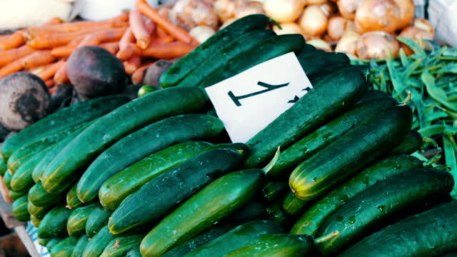 Delicious fresh cucumbers tomatoes and other vegetables with price tags lie on market counter video