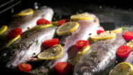 delicious trout fish is baking in the oven with lemon, tomatoes and spices video