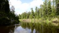 Delta Pur river in Siberia, the Yamal Peninsula, streams and swamps of Siberian taiga video