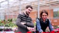 Demanding customer buying flowers in orangery video