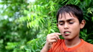 Dental Health using Ayurveda video