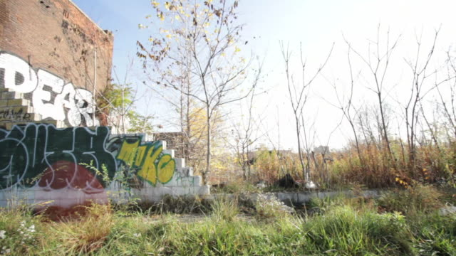 Derelict houses in Detroit suburbs USA video