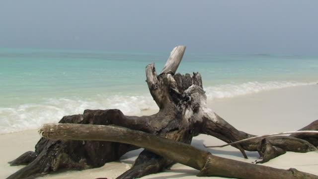 Desert Island video