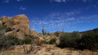 Desert Landscape with Boulders and Cacti video