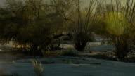 Desert motorcross backlight dust video