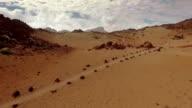 Desert on Mars. Dunes video