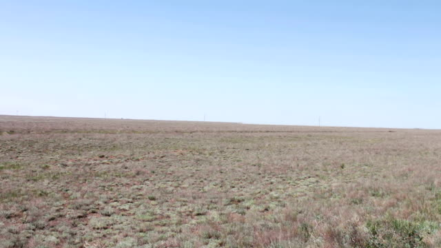 Desert steppe against the blue sky in the Republic of Kalmykia, Russia video