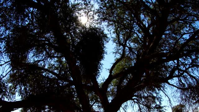 Desert Sun Time Lapse video