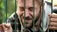 desperate man imprisoned in a cage video