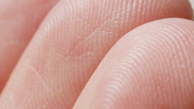 CLOSE UP MACRO DOF: Detail of Caucasian fingerprints on men's fingertips video
