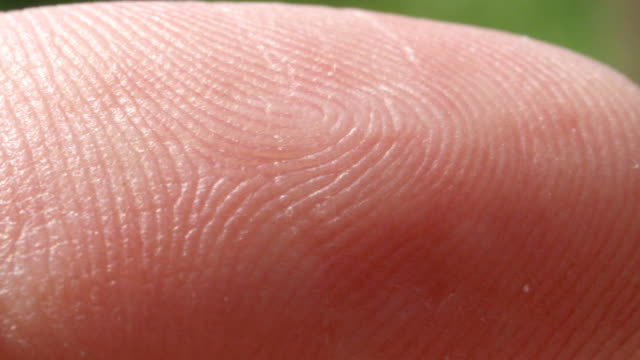 CLOSE UP MACRO: Detail of Caucasian index finger skin pattern video