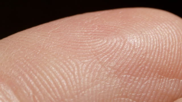 CLOSE UP MACRO: Detail of Caucasian index skin pattern fingerprint video