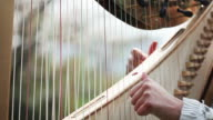 Detail of harp,time lapse video