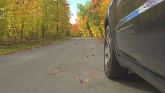 CLOSE UP: Detail of SUV car tyre driving on empty forest road in sunny autumn video