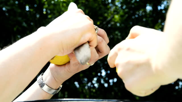 Detail of woman hands peeling fresh yellow potato with kitchen knife. Outside in the garden. Food preparation concept. video