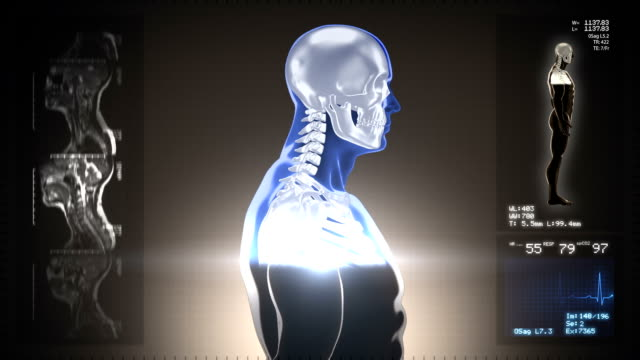 Detailed human body turning. Scan. Loopable. Blue/white. Brown background. video
